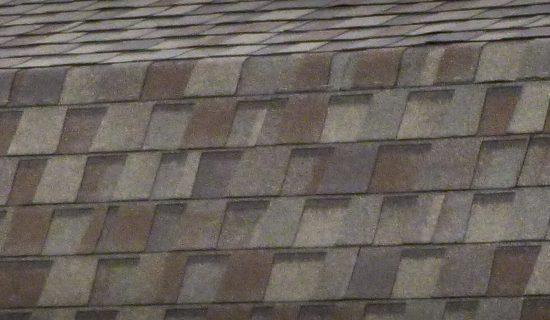 dimensional shingles for backyard sheds in ga